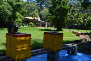 Sustainable Accommodation Maleny