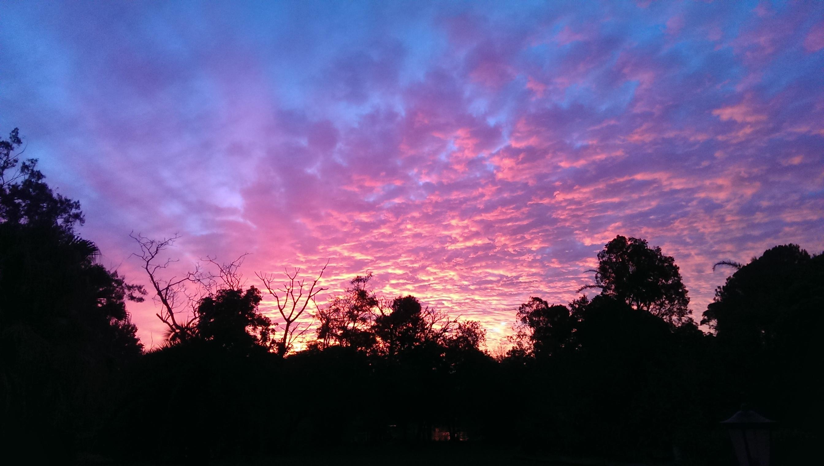 maleny farmstay spectacular sunset