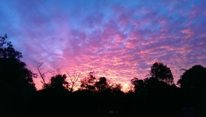 McCarthy Lake House Accommodation Maleny - spectacular sunsets