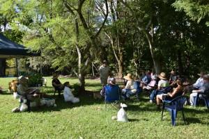 Maleny accommodation building organic garden workshop