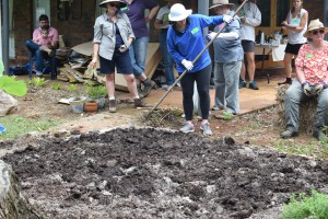 Accommodation Maleny Mushroom compost being layed in organic garden