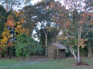 farmstay maleny garden shed