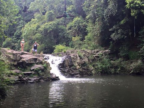Gardners Falls close to McCarthy Lake House Accommodation In Maleny