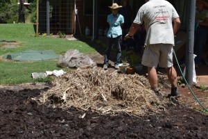 Maleny Sustainable Accommodation organic no dig garden