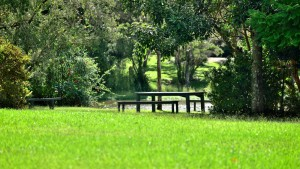 Secluded beautiful gardens idela for wedding photos